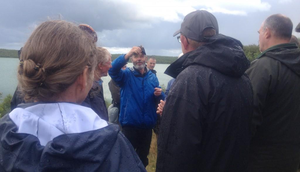 Naturvejlederen viser en lille tot tormentil og forklarer, at vi kan finde den lige om hushjørnet og grave rødder op, hvis vi vil.